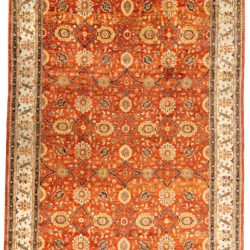 """New Afghan Transitional 11'11""""×17'2"""""""